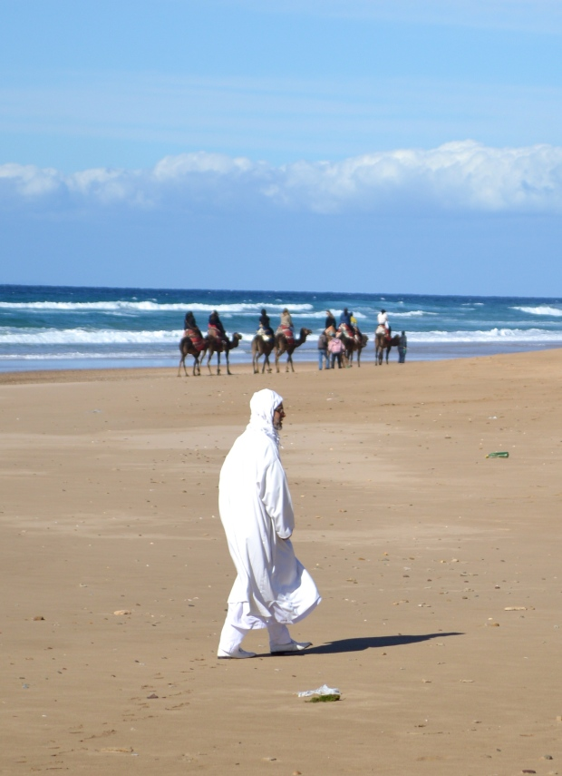 Morocco Camels 1